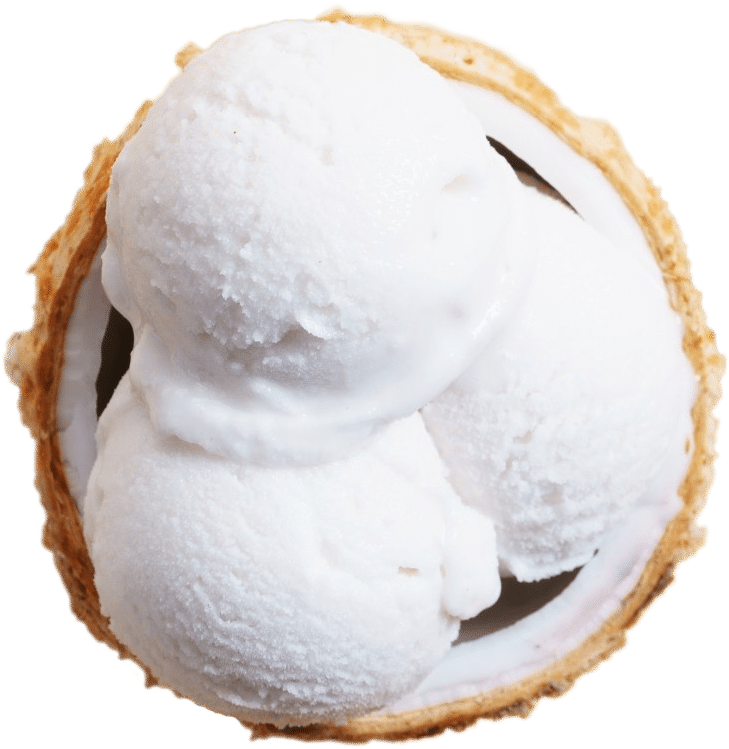 Vegan-coconut-based-ice-cream-in-coconut-shell